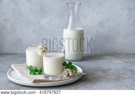 Natural, Healthy Milk Drink-yogurt, Kefir, Lassi, In Two Glasses On A Gray Background With Greenery