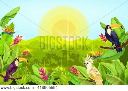 Jungle Vector Forest Landscape, Exotic Tropical Background, Palm Tree Silhouette, Toucan, Parrot, Su