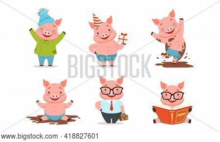 Funny Pig Reading Book, Splashing In Mud And Holding Gift Box Vector Set
