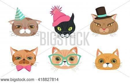 Different Cat Muzzle And Heads With Whiskers Vector Set