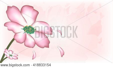 Background Falling Leaf Pink Flowers, Used For Assembly Work., Used As Vector Template In Business P