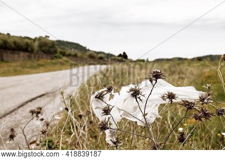 Plastic Bag Flying In The Field And Contaminate Environment. Environmental Problem With Waste, Trash