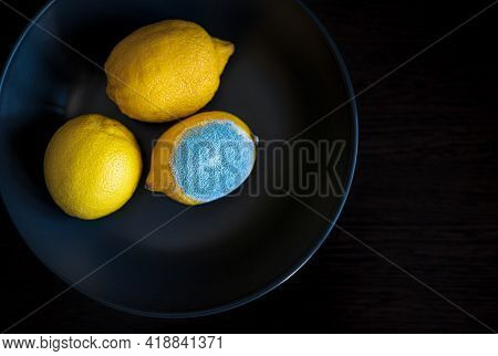 Three Tipes Of Whole Yellow Lemon: With Light Blue Turquoise Textured Mold, Normal Ripe Bright Edibl