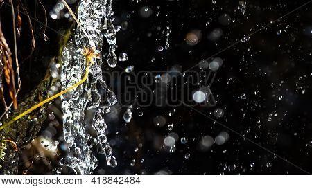 Drops Of Splashing Water Raining Down On The Autumn Vegetation