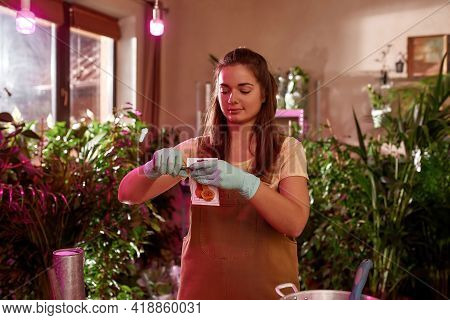 Young Girl Working In A Plantation With Plants. Home Garden Concept. Worker Standing In A Room With