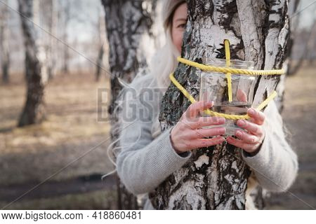 How To Tap Birch Sap. Taste Of Spring. A Useful Product After A Long Winter.