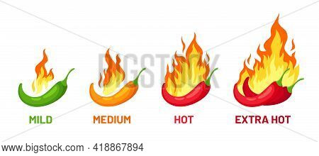 Chili Scale. Pepper With Fire For Strength Levels Mild, Medium And Extra Hot For Sauce Or Food Label