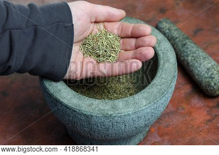 Dry Rosemary In A Man's Hand Close-up. A Portion Of Dried Spices In The Palm Of His Hand. Graystone