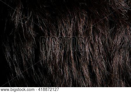 Clean Dark Hair Background