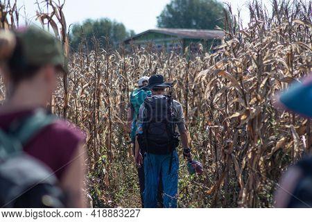 Walking In Corn Fields Between Kalaw And Inle Lake