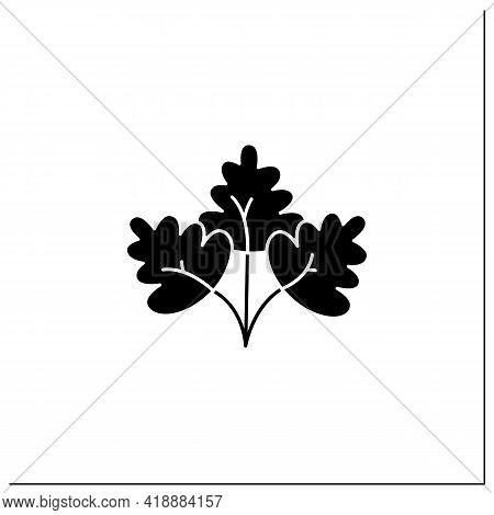 Parsley Glyph Icon. Fresh, Edible Flowering Plant. Flat Leaf, Root Parsley. Vegetarian, Healthy Nutr