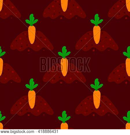 Orange Carrot Vegetable With Green Leaves Growing In Ground, Soil. Carrot Growing Process Vector Sea