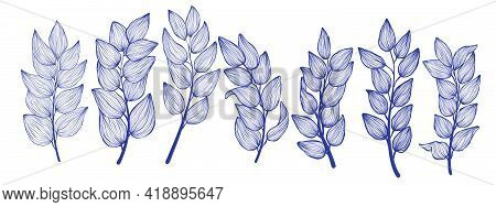 Bundle Of Tropical Brunch With Leaves In Linear Style. Exotic Hand Drawn Leaf In Trendy Style Collec