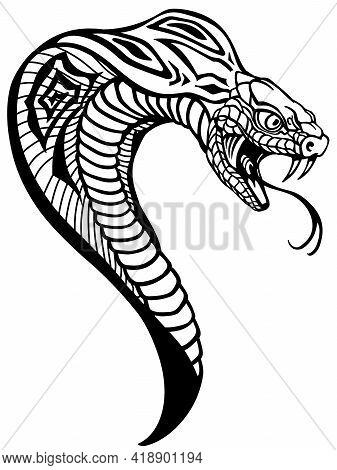 Head Of The Cobra. A Poisonous Snake In A Defensive Position. Attacking Posture. Black And White Tat