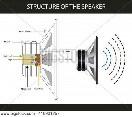 Structure Of The Speaker. Speaker And Coil. Subject Of Physics Lesson Speaker. Speaker System. Infog