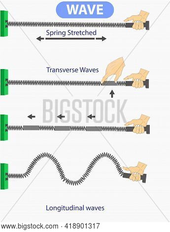 Physics. Spring Stretched. Transverse Waves. Longitudinal. The Difference Between Throwing And Perio