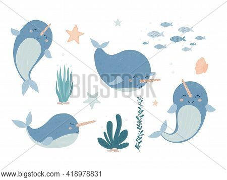 Cute Adorable Narwhal, Baby Animal With Horn Smiling In Cartoon Style Isolated On White Background.