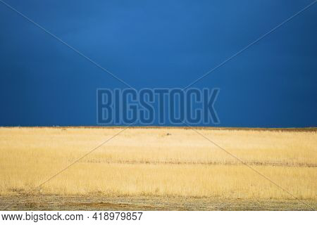 Thunderstorms Over Windswept Grasslands On A Ranch Taken At A Rural Prairie In The Eastern Colorado