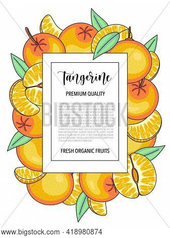 Vector Background With Tangerine, Whole And Pieces - Card Design With Fruits.