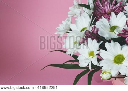Bouquet Of White Chrysanthemums On A Pink Background. A Delicate Festive Floral Arrangement.