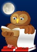 Wise owl studying books in the moon shine poster
