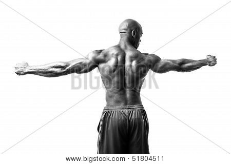 Bodybuilder Arms Spread