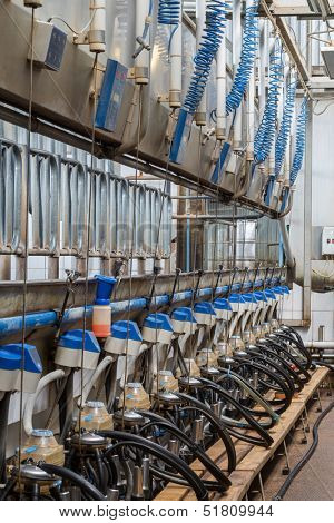 Workshop of dairy farm with equpment for milking cows