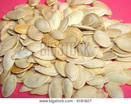 Pumpkin Sunflower Seeds Cucurbita Pepo
