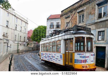 Decorated Tram
