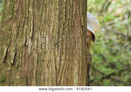 Woman Peers Around Tree
