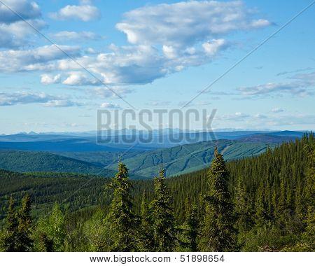 Interior Alaska Landscape