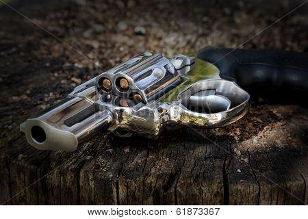 Revolver Thrown Away