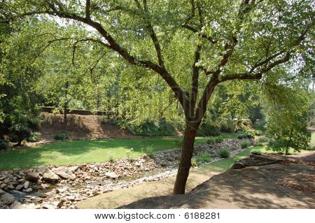 Rock Quarry Garden