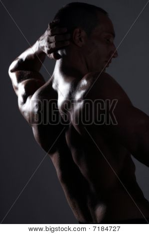 Back Of A Muscular Body Builder