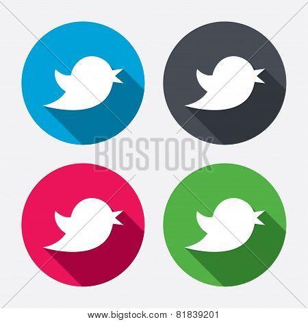 Bird sign icon. Social media symbol.