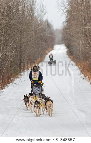 Beargrease 2015 Marathon Ryan Anderson On Trail