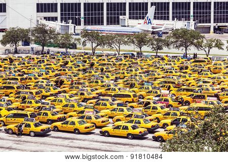 Taxis Wait At The Airport In Miami