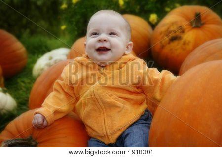 Tis The Season For Pumpkins
