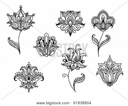 Persian paisley flowers and blossoms
