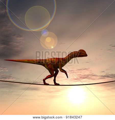 Concept or conceptual abstract business metaphor as wild heavy dinosaurus balancing on rope over sunset sky background poster