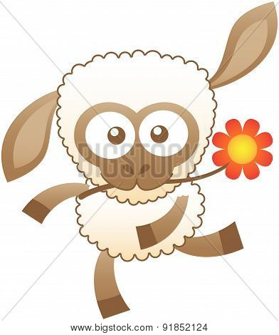 Friendly baby sheep dancing animatedly while holding a flower with its mouth