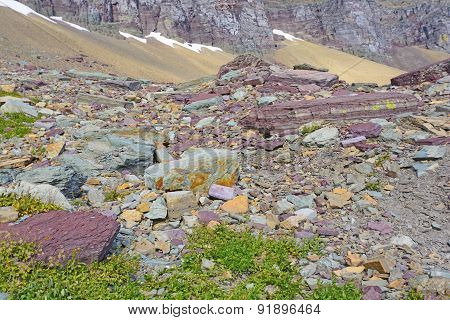 Colorful Rocks In A Scree Field