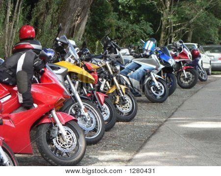 Row Of Bikes2