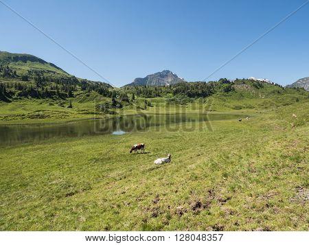 A view of Alpine mountains surrounding the village Schocken in Bregenzerwald region Vorarlberg Austria