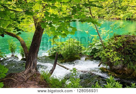 National Park the Plitvice lakes in Croatia