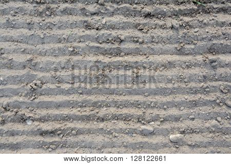 Loosened grey grooved soil texture - background. Landscape.