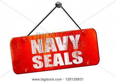 navy seals, 3D rendering, vintage old red sign