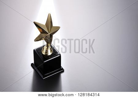 star trophy on the gray background