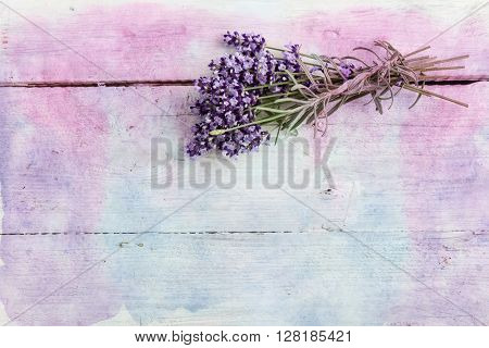 Lavender twigs lying on a textured grunge background