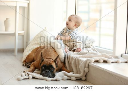 Little baby boy with boxer dog resting near window at home